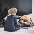 DierenartsAmsterdam.com Hond en Kinderen